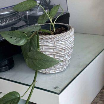 Grey Woven effect ceramic planter for short 9-10cm pots Plant Accessories