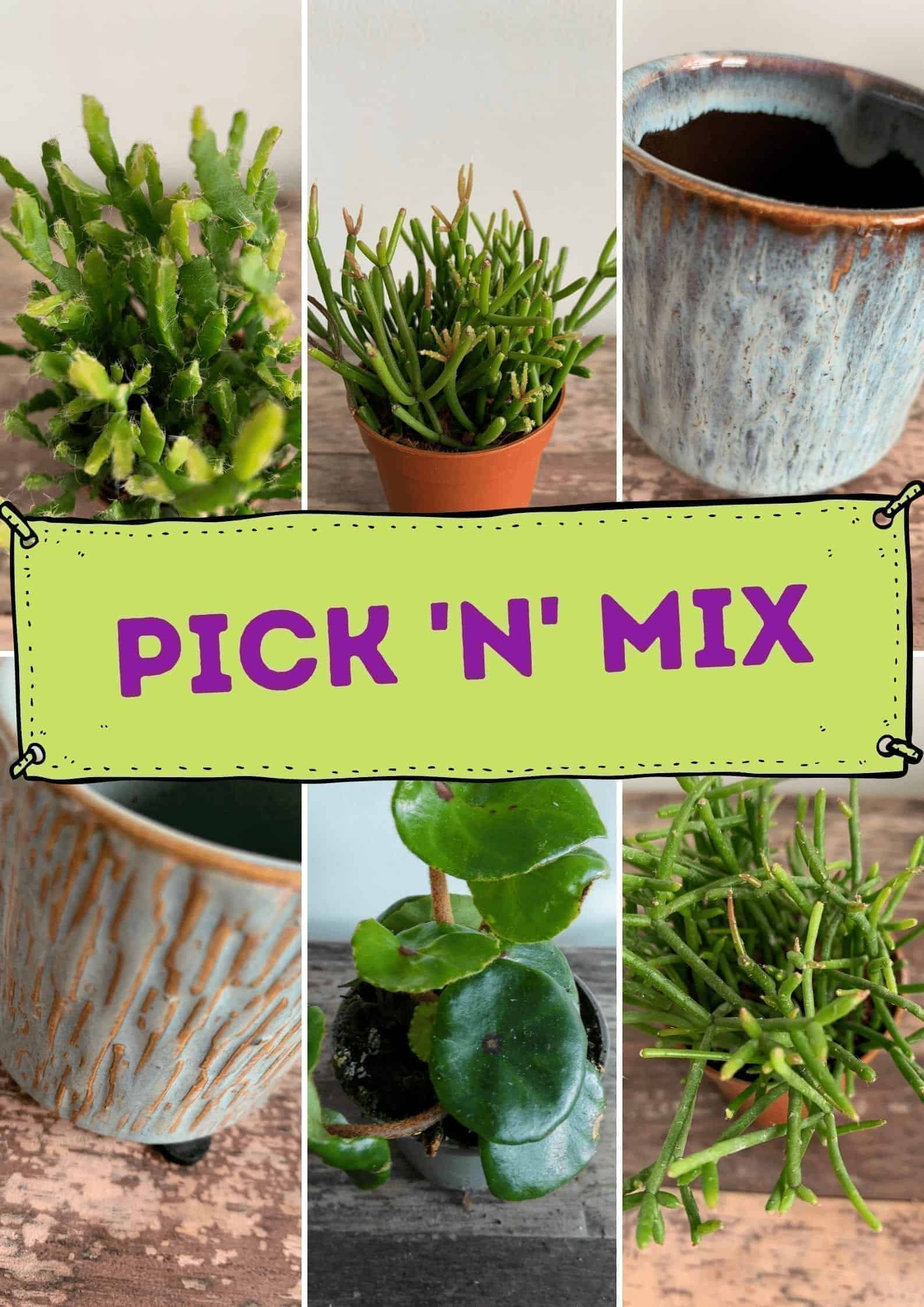 Pick 'n' Mix Box - Mini items bundle