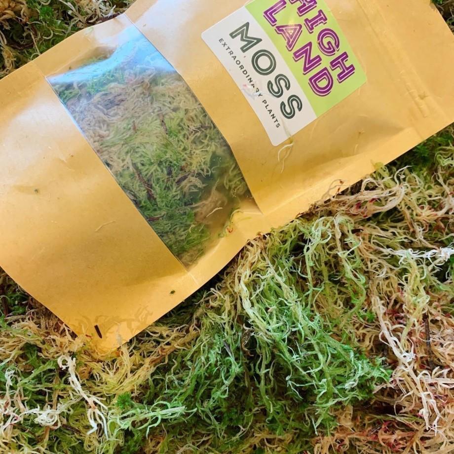 Fresh sphagnum moss in classic green/brown Fresh Moss green moss