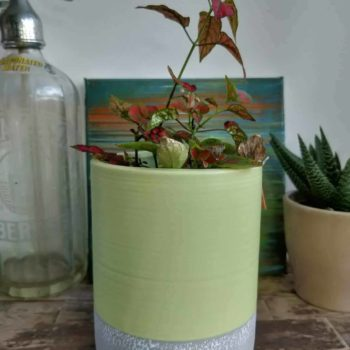 Tall green planter for pots up to 10cm Plant Accessories 10cm planter 4