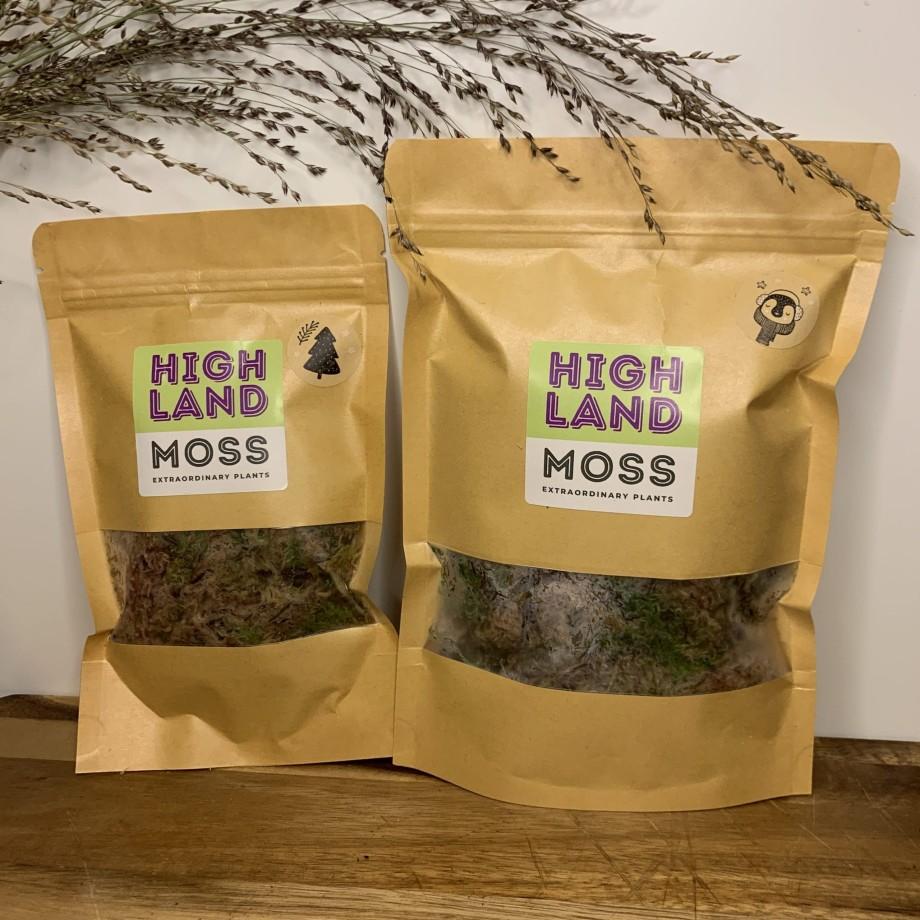 Fresh sphagnum moss in classic green/brown Fresh Moss green moss 5