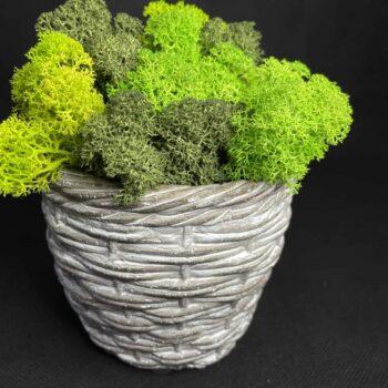 Grey Woven effect ceramic planter for short 9-10cm pots Plant Accessories 10cm planter