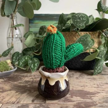 Knitted Cactus – 'Fire Flower' Gift Ideas