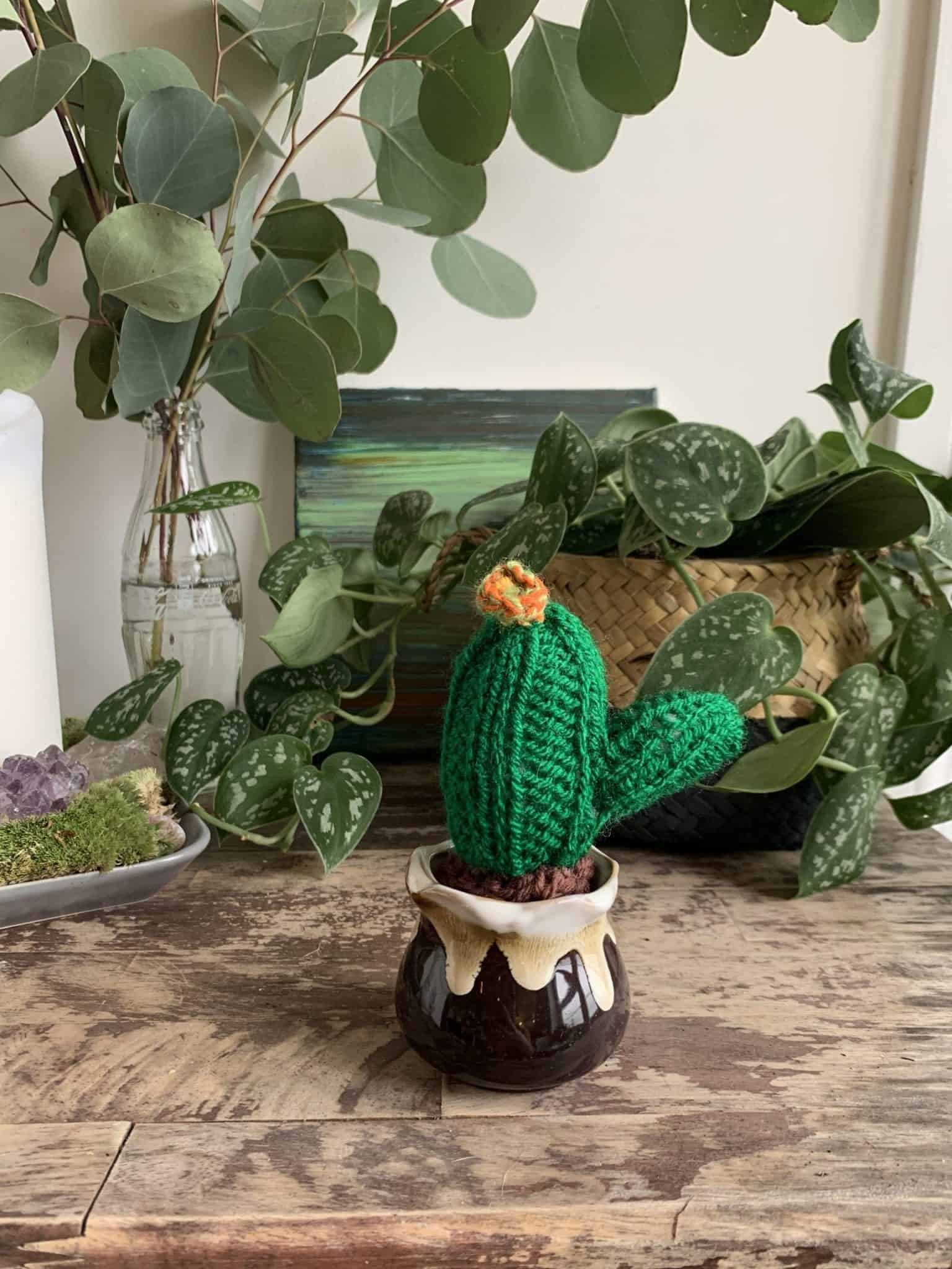 Knitted Cactus - 'Fire Flower'