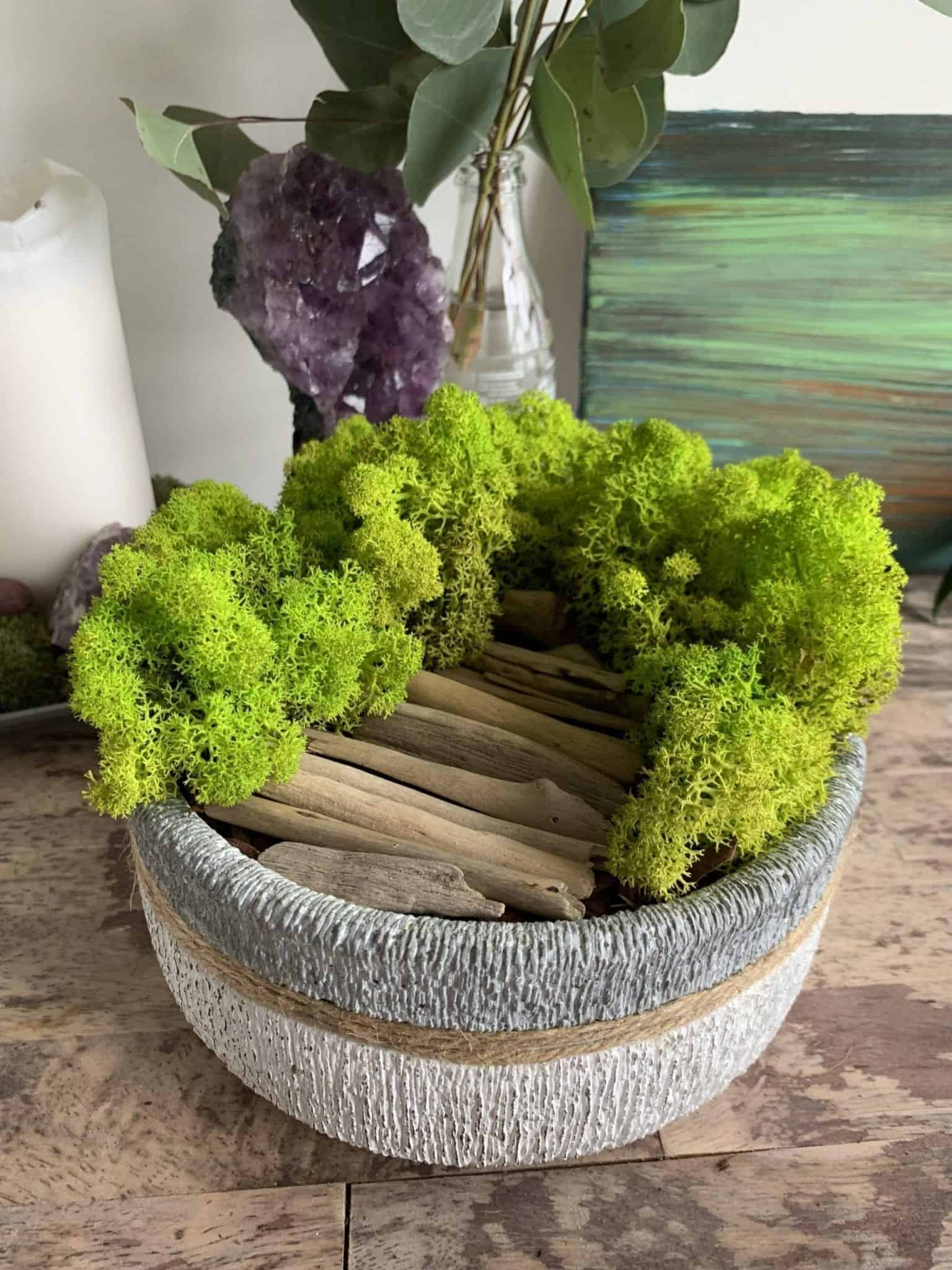 Preserved Moss Bowl 'Doorway to Paradise' | 19cm