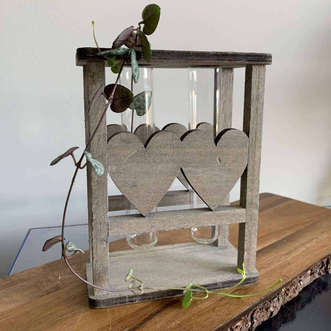 Heart Design Propagation station with FREE mystery cutting