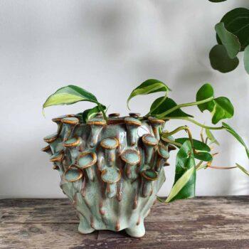 Seafoam 'toadstool' Planter for up to 8cm pots Plant Accessories 8cm planter