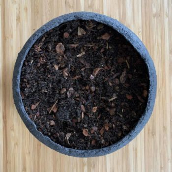 Soil Mix for Moss Bowl Moss Bowl Kit moss bowl