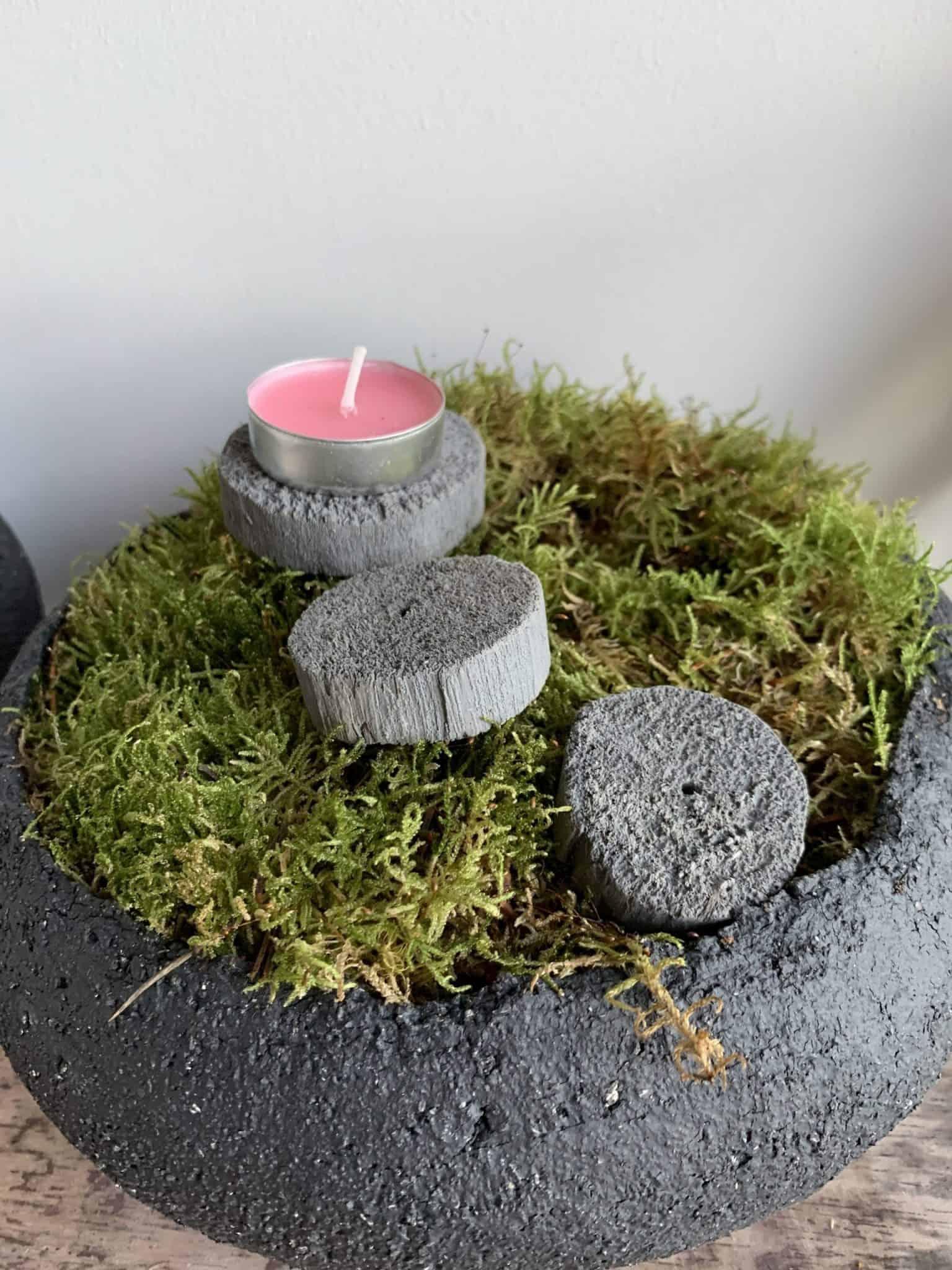 How to make a moss bowl
