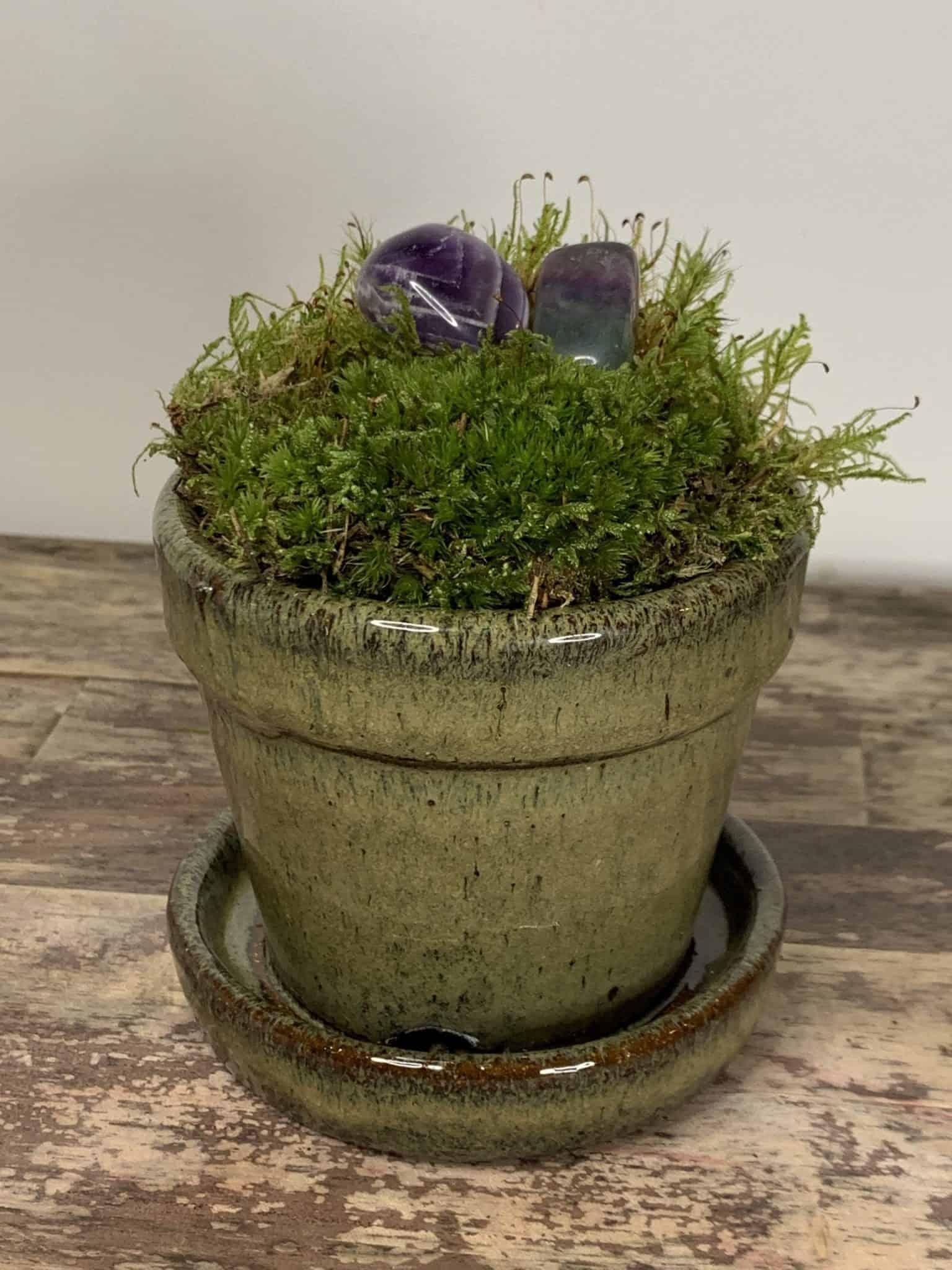 Moss Green Planter with attached Dish for 9cm Pots