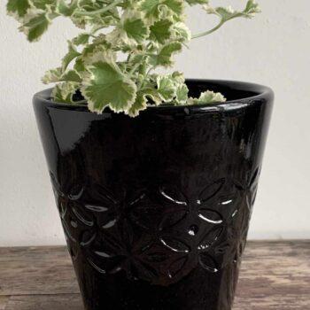 Black Planter for 10cm pots Planters 10cm planter