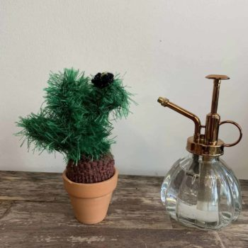 Knitted Cactus – 'Wee Furry Monster' Gift Ideas knitted plant