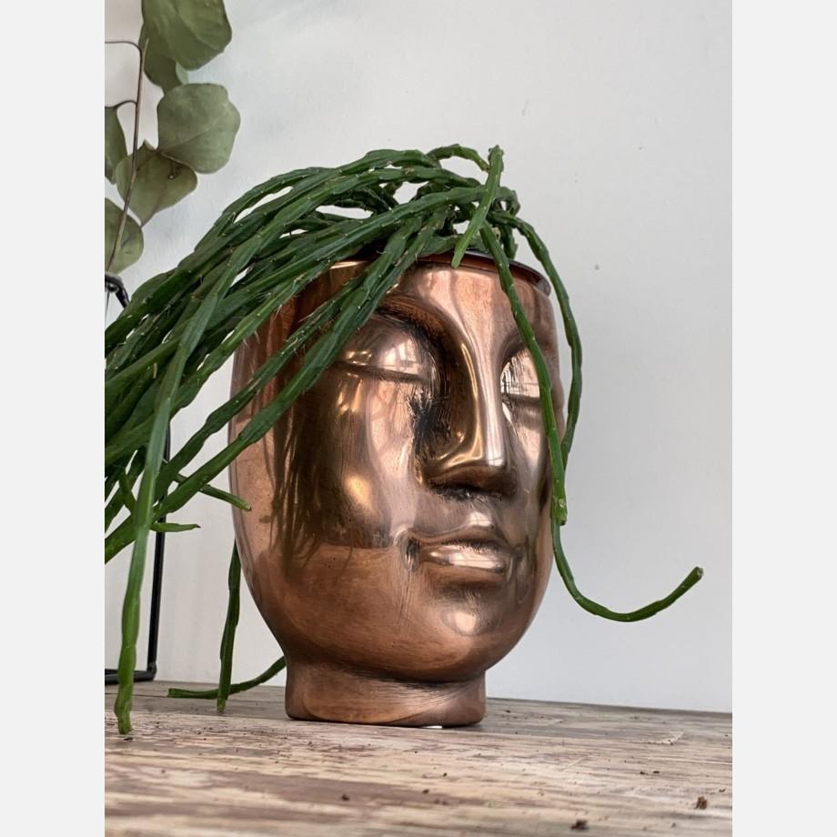 Bronze Effect Pot Head Planter for up to 9cm pots
