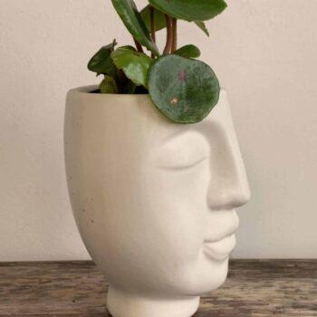 Wee White Head Planter for 5cm Pots Planters 5cm planter 2