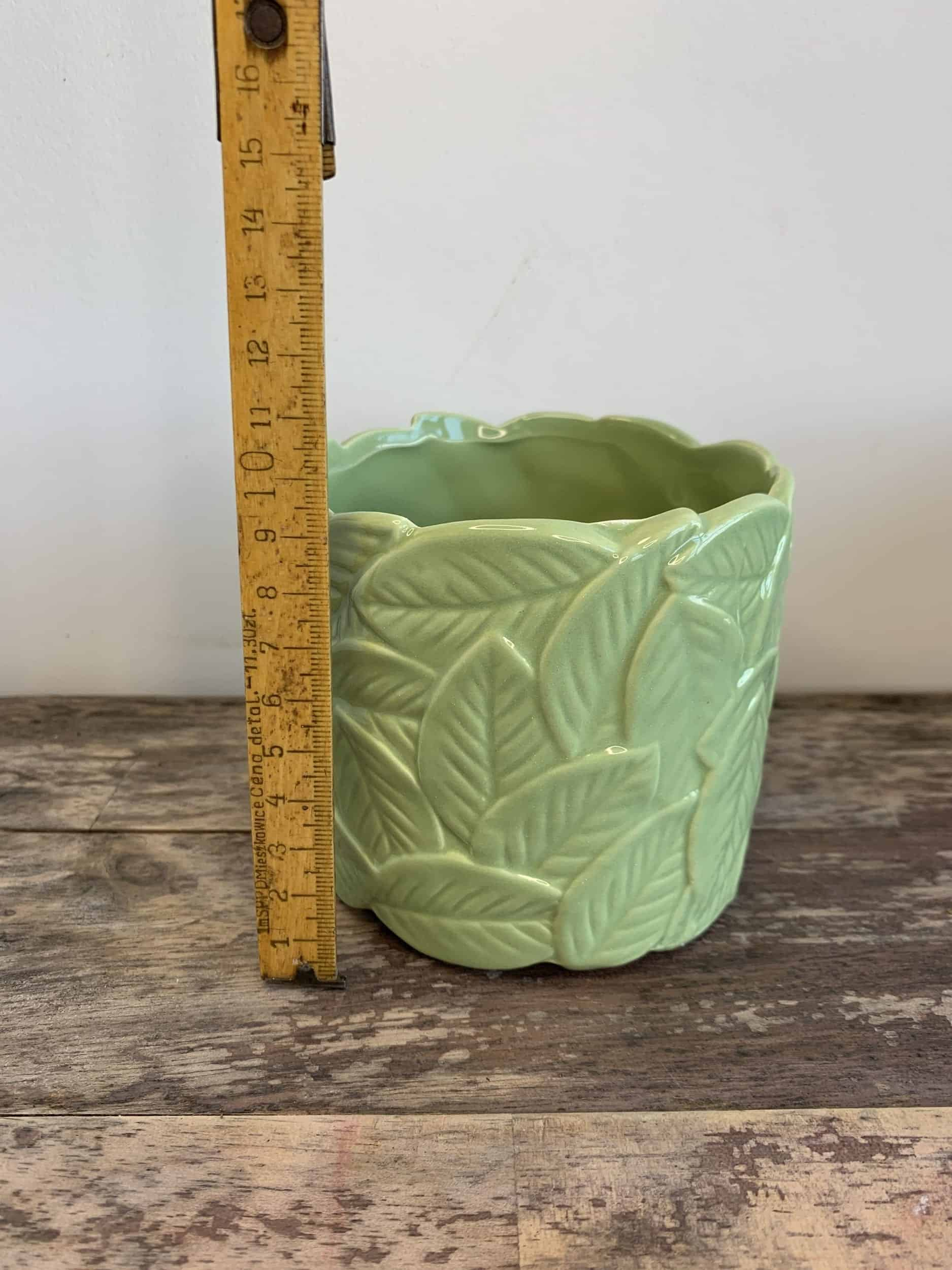 Leafy Planters in Light or Dark Green for pots up to 9cm