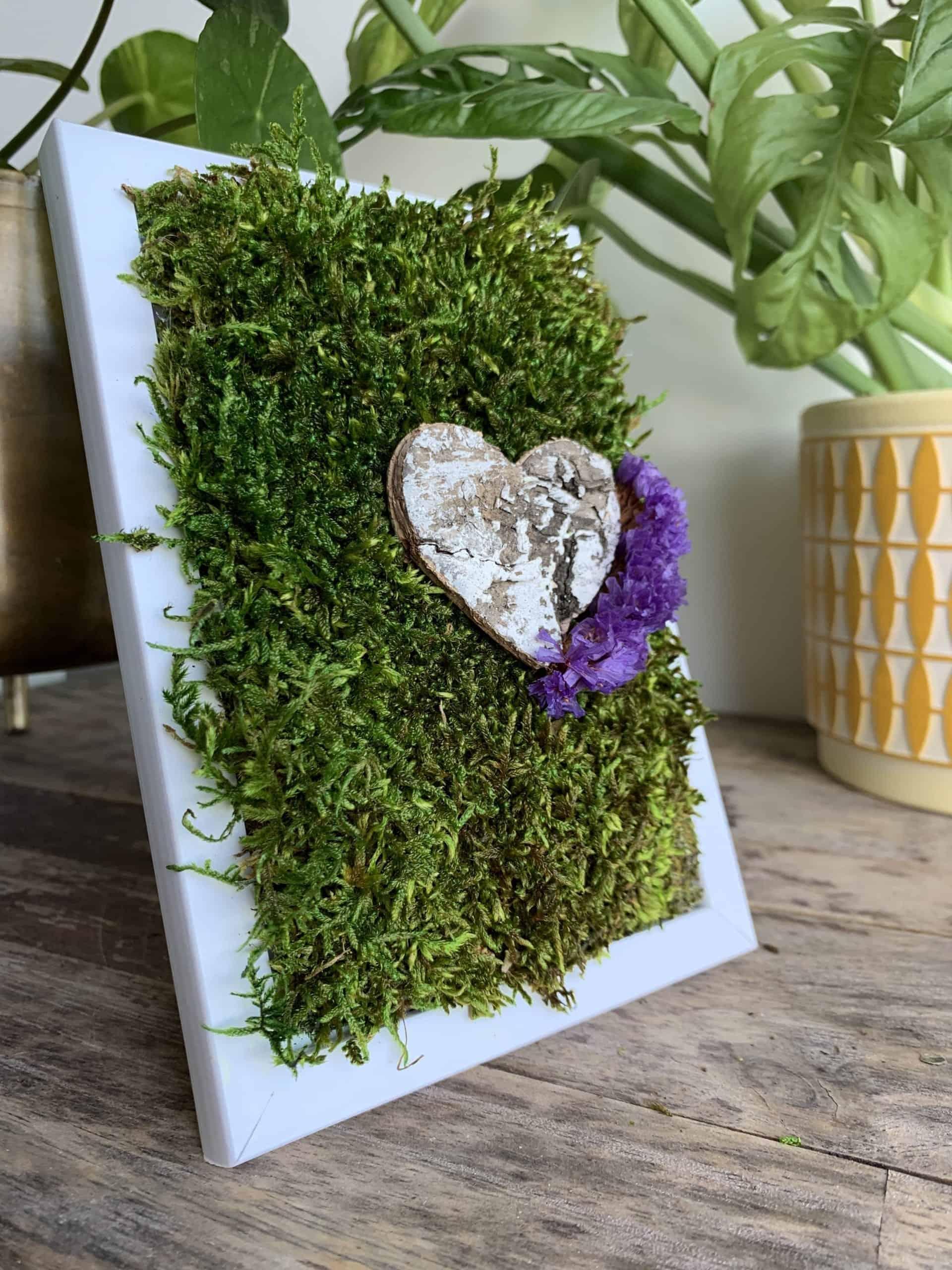 Heart on Moss in White Frame 7