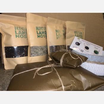 Make your own moss bowl kit builder Moss Bowl Kit