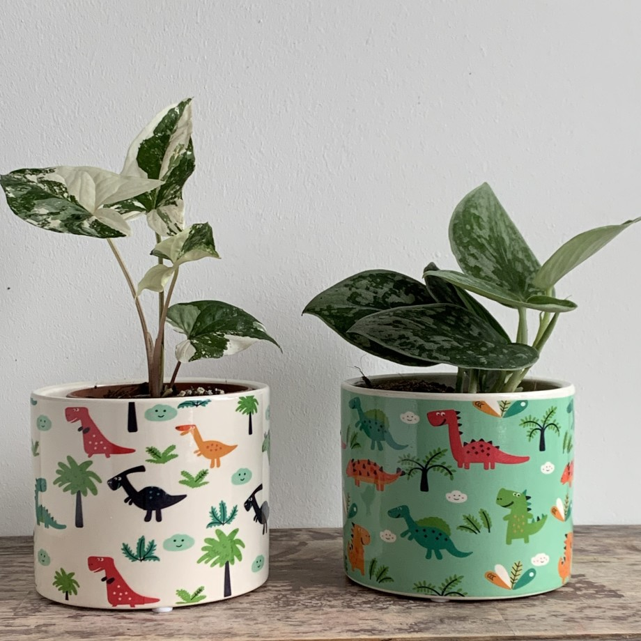 Dino Planter for up to 9cm pots