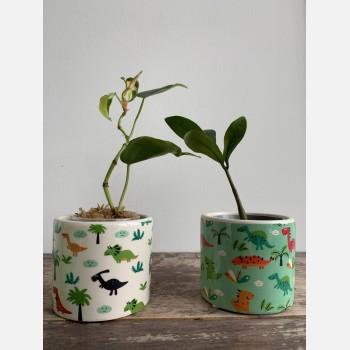 Dino Planter for up to 7cm pots Planters 7cm planter