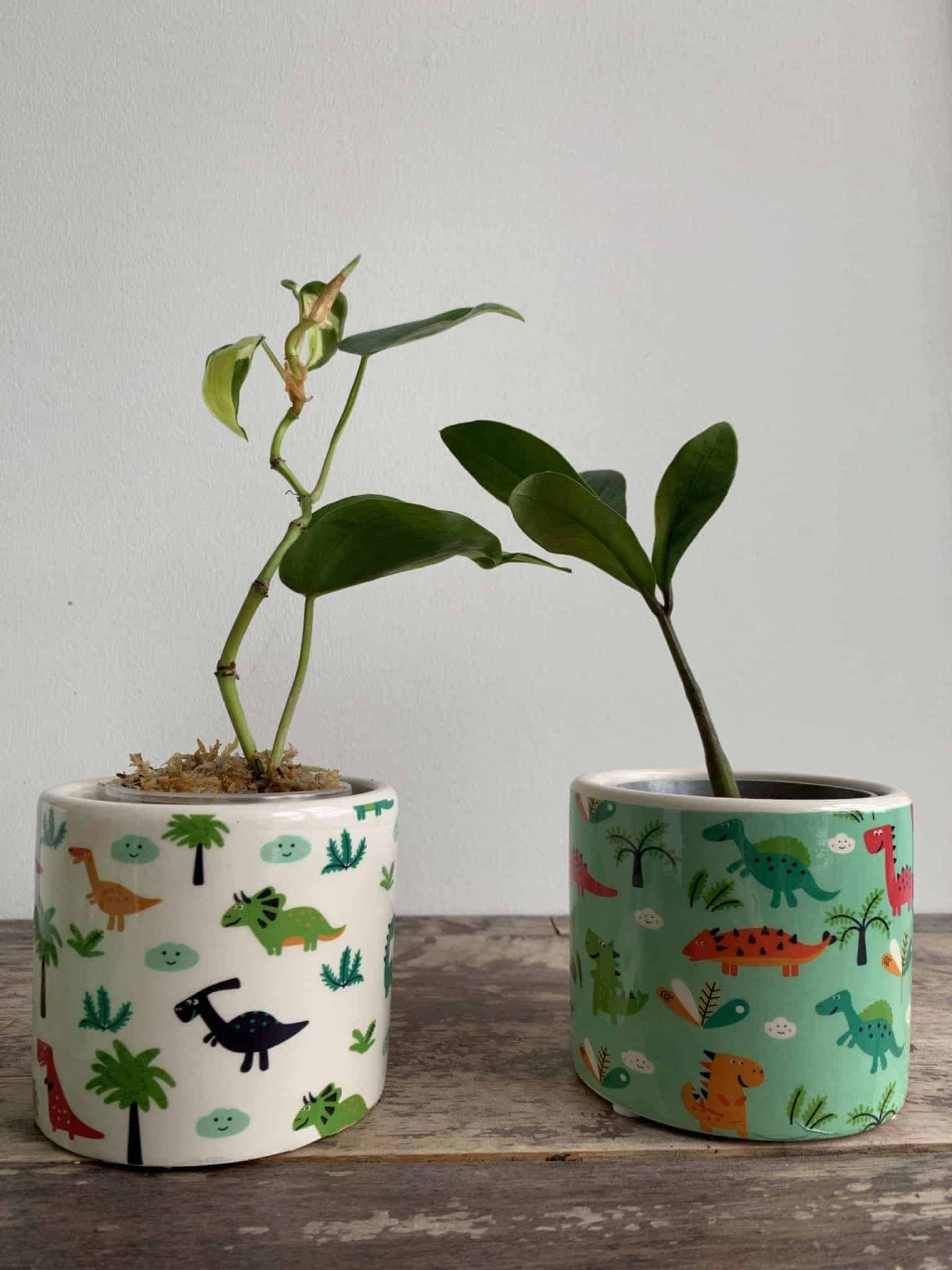 Dino Planter for up to 7cm pots