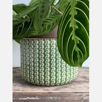 Knitted design ceramic planter for up to 12cm pots Plant Accessories 12cm planter
