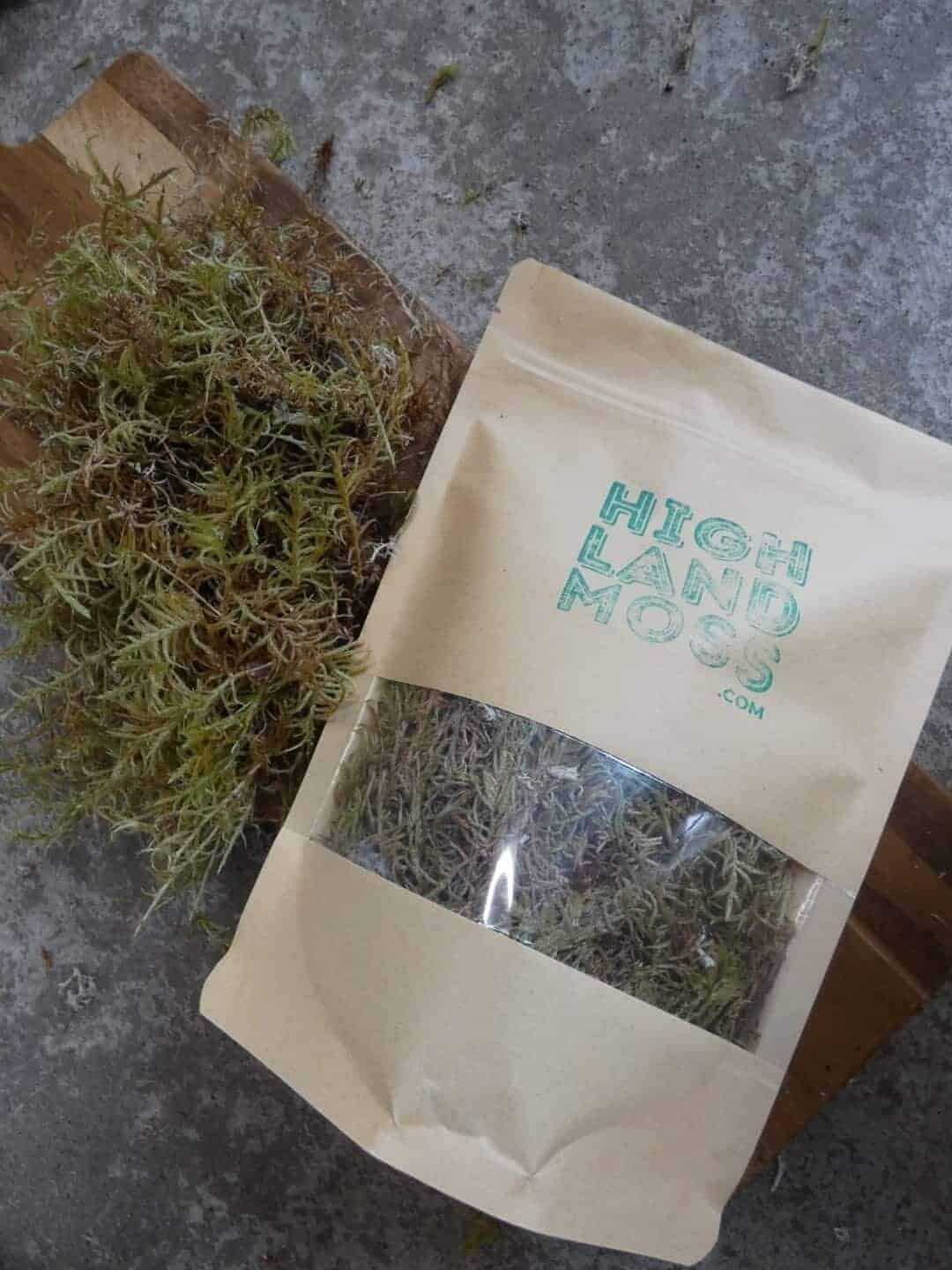 Fresh Live Feather Moss - 25g