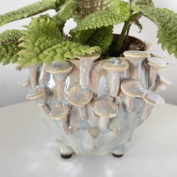 Pearlescent 'toadstool' Planter for up to 7.5cm pots Plant Accessories 7.5cm planter