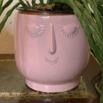 Pink Pot head planter for 8cm to 9cm pots Plant Accessories