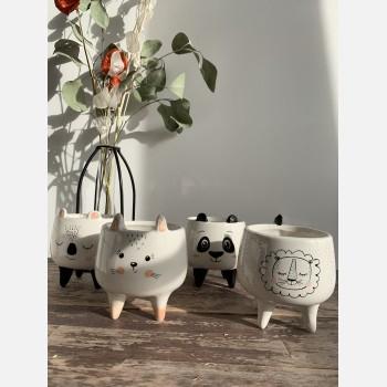 Animal Gang Planter Mix for up to 6.5cm Pots – Koala | Panda | Cat | Lion Planters 6.5cm planter