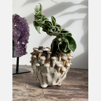 Brown 'toadstool' Planter for up to 7.5cm pots Plant Accessories