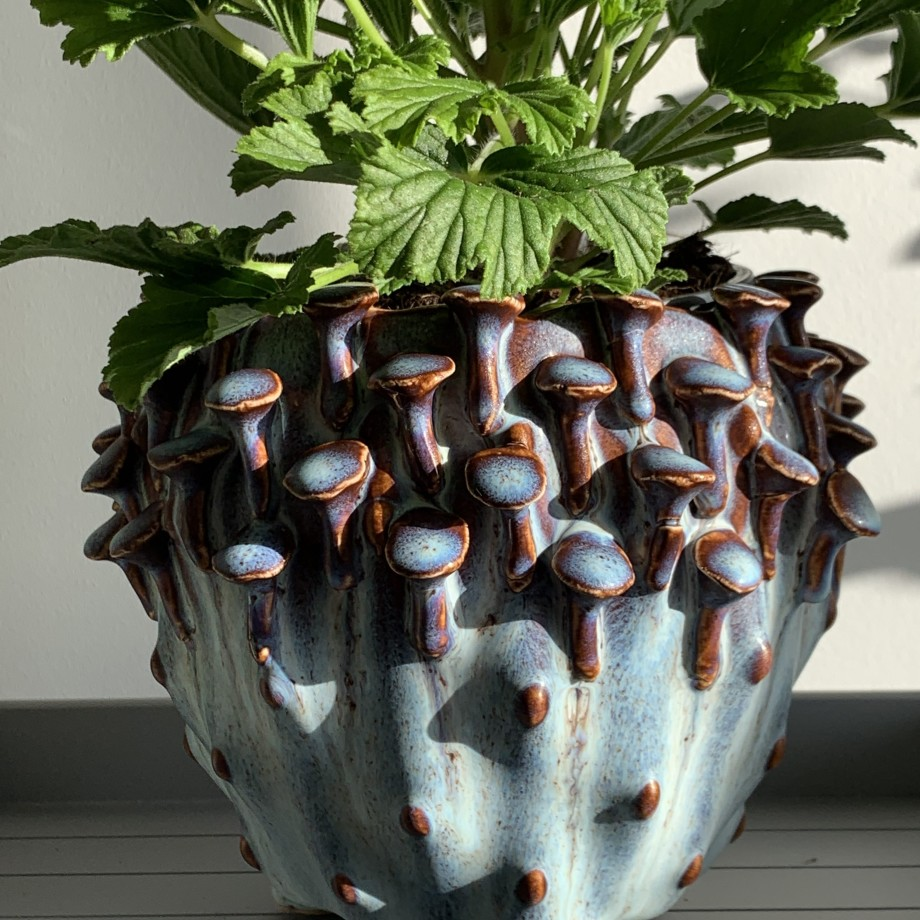 Blue 'toadstool' Planter for up to 11cm pots