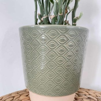 Green Patterned Planter for up to 13cm Pots Planters 12cm planter