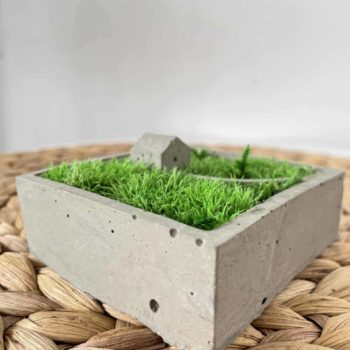 Concrete House in the Moss Artwork gift 2