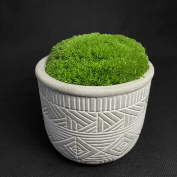 Preserved Moss Bowl in Burolo Planter Artwork 9cm moss bowl