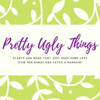 Pretty Ugly Things – Imperfect Products Pretty Ugly Things