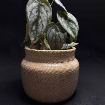 Corda Planter for up to 11.5cm pots Plant Accessories 11.5cm planter