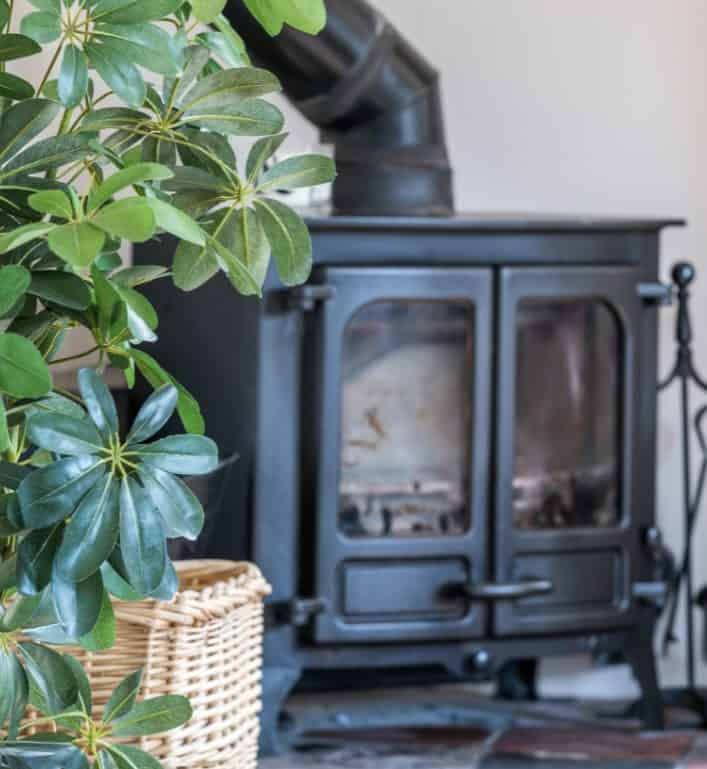 plant with wood burner