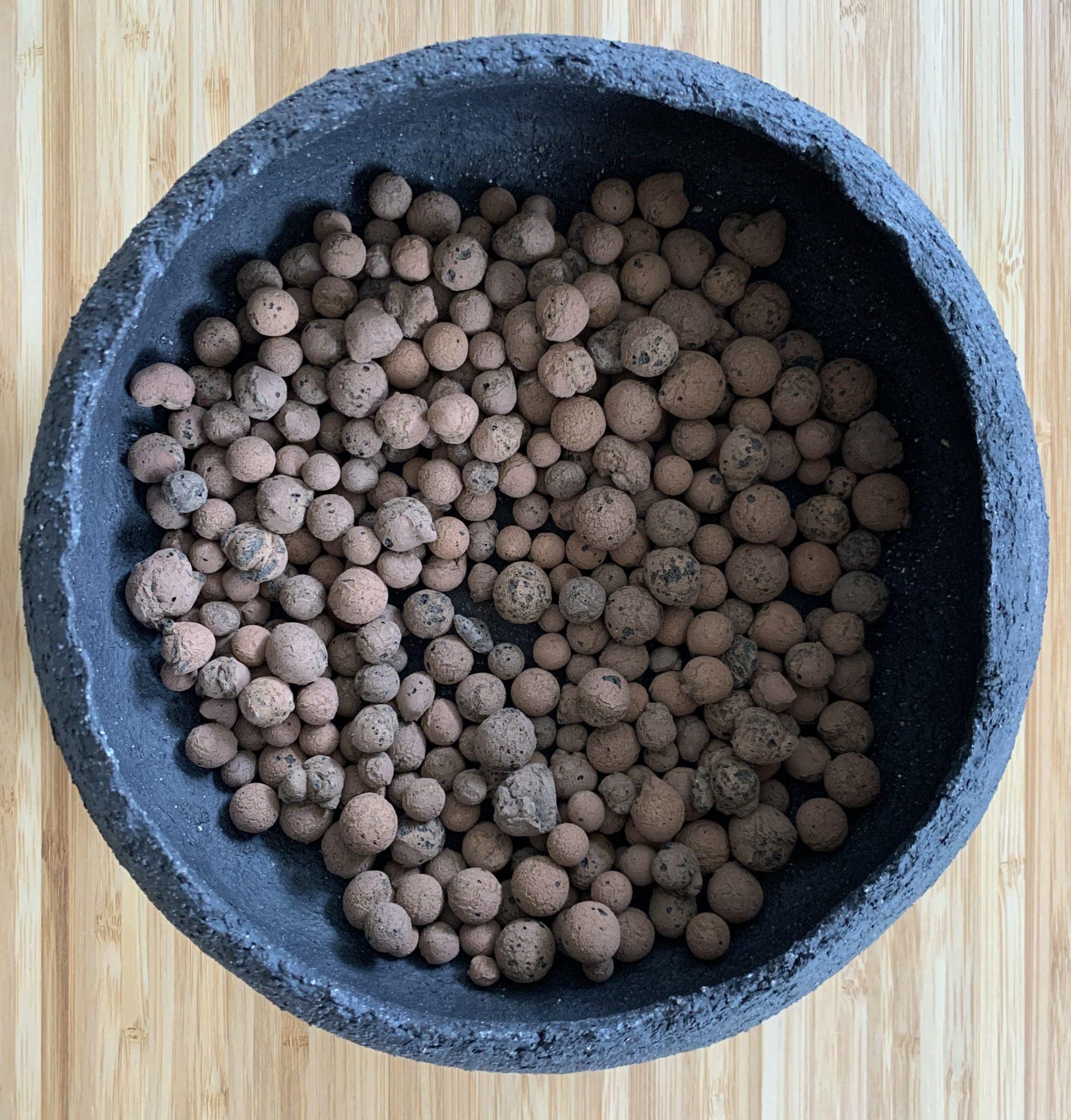 leca pebbles in bowl