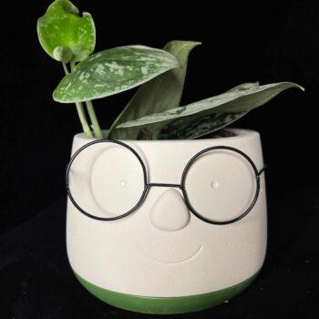 Face planter with glasses for 8.5cm pots Planters 12cm planter