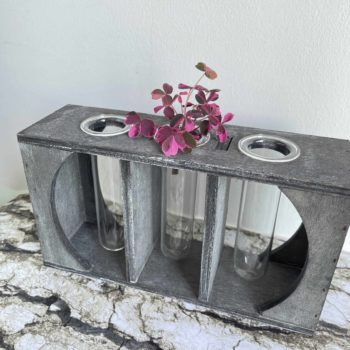 Triple Tube Propagation station with FREE mystery cutting Plant Accessories cuttings