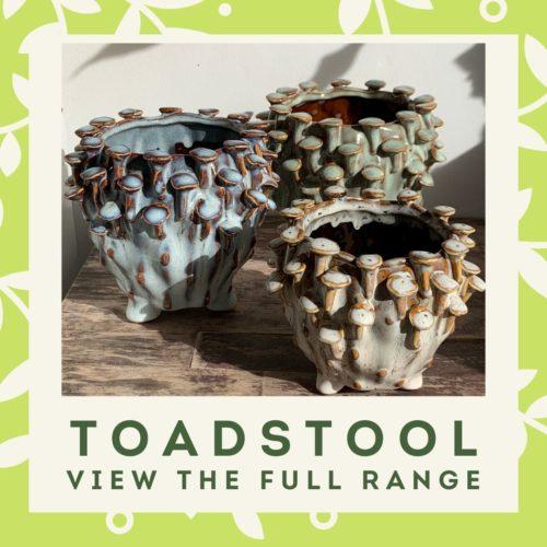 Toadstool menu block