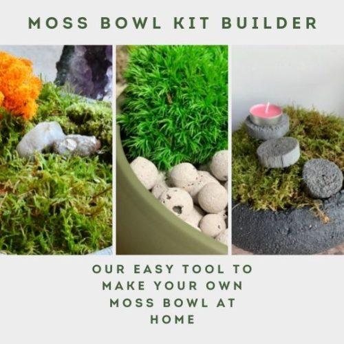 mosss bowl kit menu
