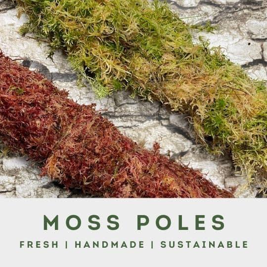 moss poles menu block